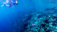 Girl snorkeling at beautiful coral reef Stock Footage