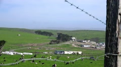 Point Reyes National Park, dairy farm Stock Footage