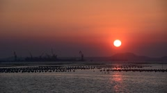 Sunset at sea with shipping cargo port background Stock Footage