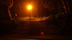 Lamppost by the street filmed by night, very yellow glow Stock Footage