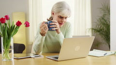 Mature woman laptop computer desk flowers - stock footage