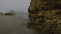 View of rock formation and fog on Oregon coast Stock Footage