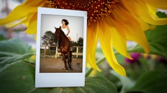 Sunflower Frame 01 Stock After Effects