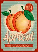 Vector vintage styled apricot poster Stock Illustration
