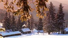 Beautiful winter snowing scene Stock Footage