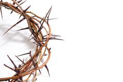 A crown of thorns on a white background - Easter. religion. - stock photo
