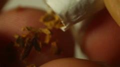 Tobacco leaf leaves up close cigarrette Stock Footage