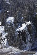 Ticino, Switzerland - Winter landscape with conifers Stock Photos