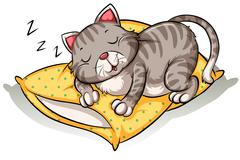 Stock Illustration of Cat sleeping above the pillow