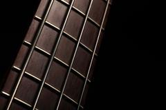Bass fret board - stock photo