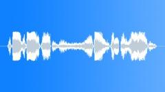 Sound effect, tiger Sound Effect