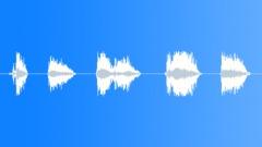 Sound effect, leopard 4 Sound Effect