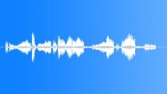 Sound effect, leopard 6 Sound Effect