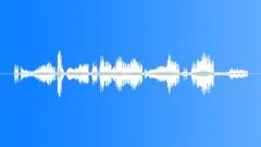 Sound effect, leopard 12 Sound Effect