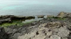 Spain Mallorca Island Cala Blava 002 rocky shore with green algae Stock Footage
