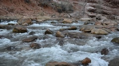 Red rock landscape in Zion National Park, Utah Stock Footage