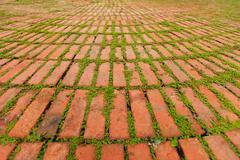 Brick Pavers Outlined by Green Plants Growing Between - stock photo