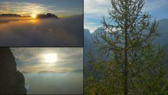 MONTAGE: Beautiful nature in sunny autumn Stock Footage