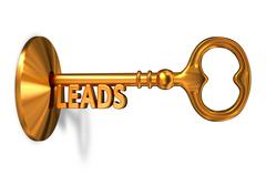 Leads - Golden Key is Inserted into the Keyhole - stock illustration