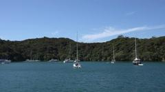 Yachts at anchor at idyllic island, Bay of Islands, New Zealand - stock footage