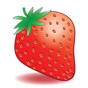 Vector ripe strawberries on a white background Stock Illustration