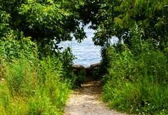 Dirt path leading to water through shrubs - stock photo
