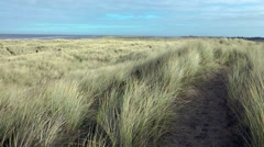 Path through sand dunes swaying grass  wintry sky Stock Footage