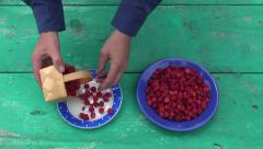 Fresh sweet  raspberry in two ceramic  plate Stock Footage