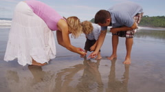 Parents and young son looking for shells at beach - stock footage