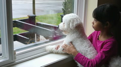 Puppy And Little Girl Staring Out The Window Stock Footage