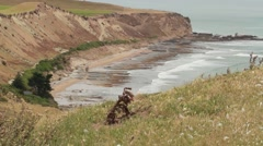 NZ Lanscape with waves Stock Footage