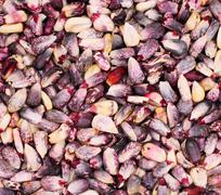 Rose and red corn kernels as - stock photo