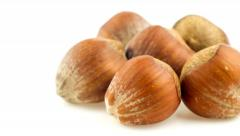 Hazelnuts in shells sliding from right to left in and out of view on white Stock Footage