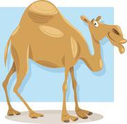 Stock Illustration of dromedary camel cartoon illustration