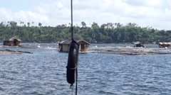 Vertical Tire Swing along lake shore Arkistovideo