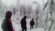 Stock Video Footage of Sweden Lapland Sarkimukka, Tourists walking through forest 001