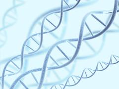 Stock Photo of DNA structure