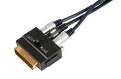 Video adapter and  two golden rca - stock photo