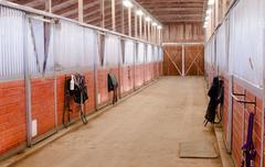 Horse Barn Animal Sport Paddock Equestrian Ranch Racing Stable - stock photo