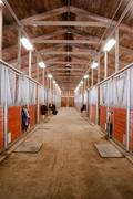Horse Barn Animal Sport Paddock Equestrian Ranch Racing Stable - stock photo