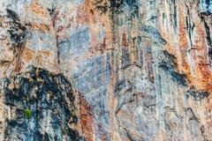 Barren rockface - stock photo