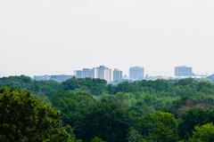 Green forest against distant buildings Stock Photos