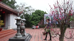 spring festival, the temples to burn incense for good luck - stock footage