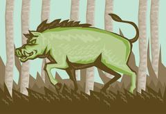 Stock Illustration of Razorback Wild Pig Boar Attacking