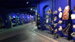 4k Gemstones exhibition cool blue room Jardim Tropical Madeira Stock Footage
