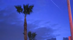 Palm tree and pole infront of dark blue sky Stock Footage