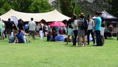 People Gather for the Clarens Craft Beer Festival Stock Footage