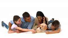 Happy family with their puppy on white background Stock Footage