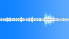 Sound effect noise jungle 1 - sound effect