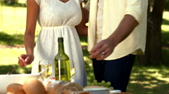 Romantic couple having wine in park Stock Footage